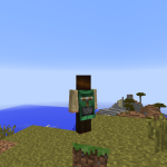 Minecon 2013 Cape Success!